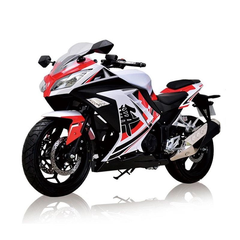 Гоночный мотоцикл Oem RZ3